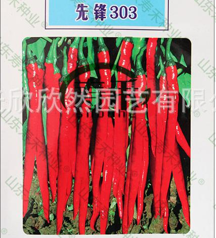 Beauty Series 303 Line Pepper Pioneer Seeds With High Yield And Disease Resistance Of Dry Fresh Dual-purpose T(China (Mainland))