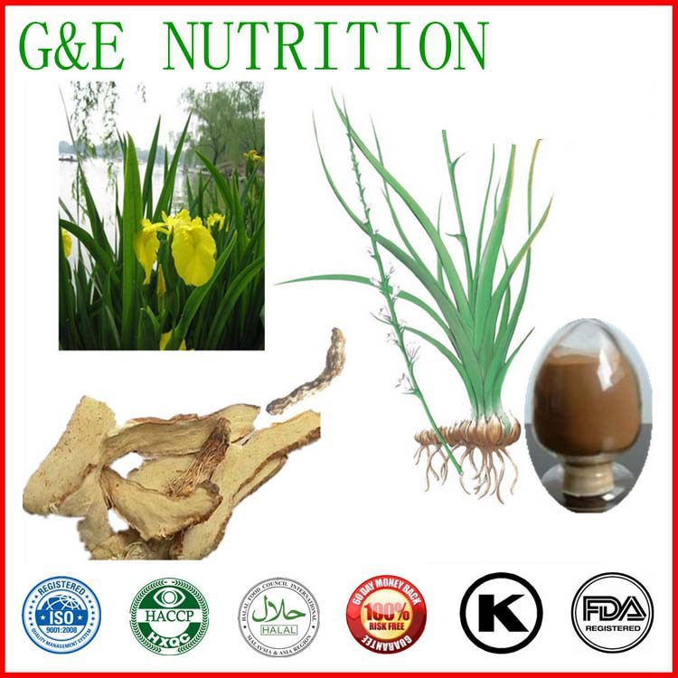 Chinese traditional herb Rhizoma Anemarrhenae extract with 20% Timosaponin