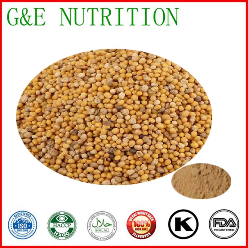 low price supply high quality white mustard seed extract 1000g<br>