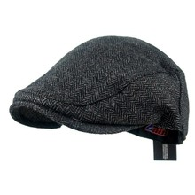 New gentleman newsboy cap male beret for winter and autumn grace flat caps men
