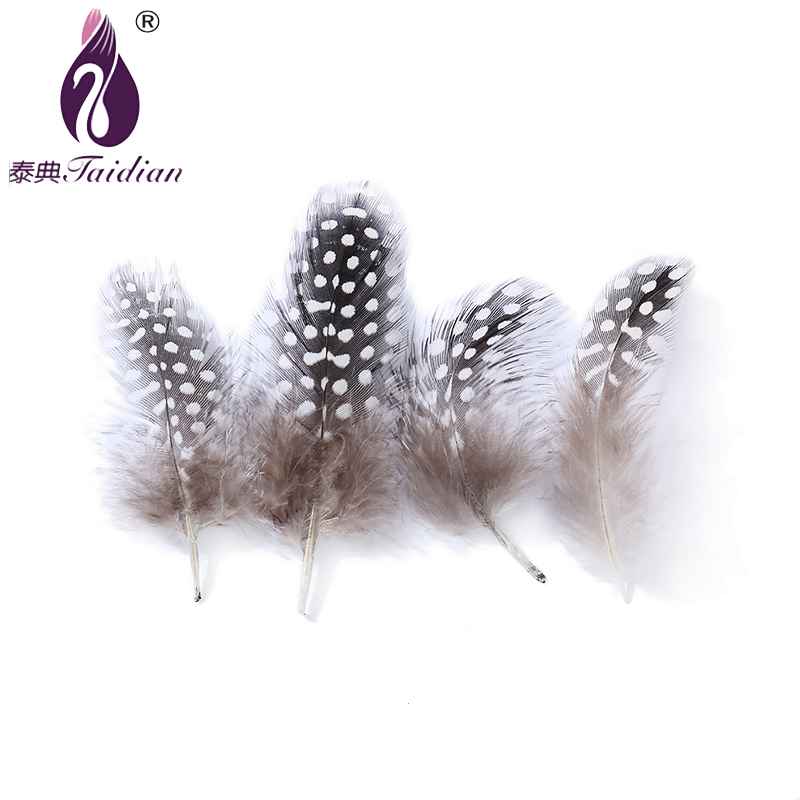 Cheap Feathers Dyed Natural Dot Guinea Fowl Feathers 5-10cm 100pieces Carnival Feathers Beautiful Decorative Feather accessories(China (Mainland))