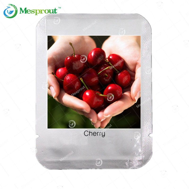 10 Pcs Dark Red Cherry Seed Balcony Garden Fruit Bonsai Potted Plant Seed Green Bonsai Cherry Fruits Seed(China (Mainland))