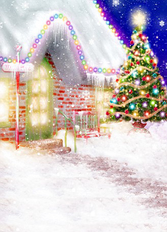 Фотография 600CM*300CM Backgrounds Happy Holidays Christmas decoration hanging lights photography backdrop background AY 1295