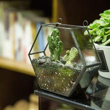 Buy Succulent Plant Flower Pots Geometric Hexagon Glass Terrarium Box Wall Planter Hanging Plant Pots Garden Bonsai Jardin Vertical for $27.00 in AliExpress store