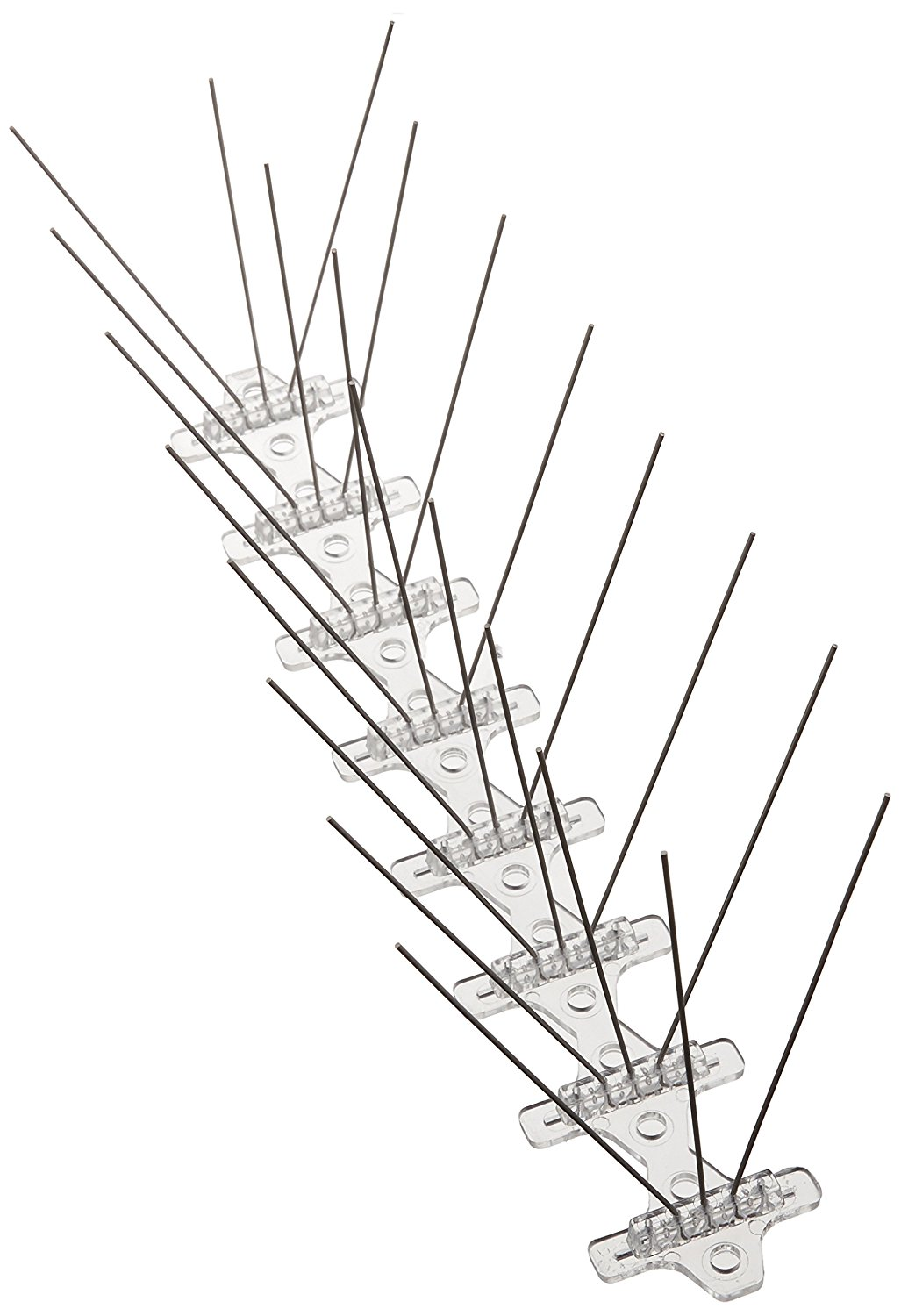 online get cheap bird spikes
