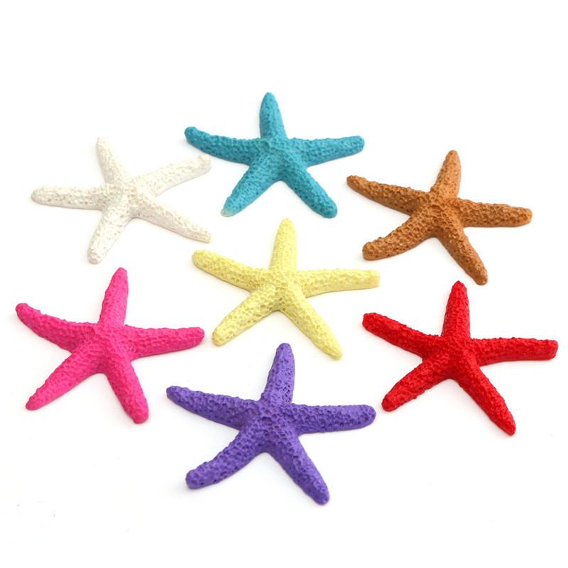 Раковины и Морские Звезды из Китая
