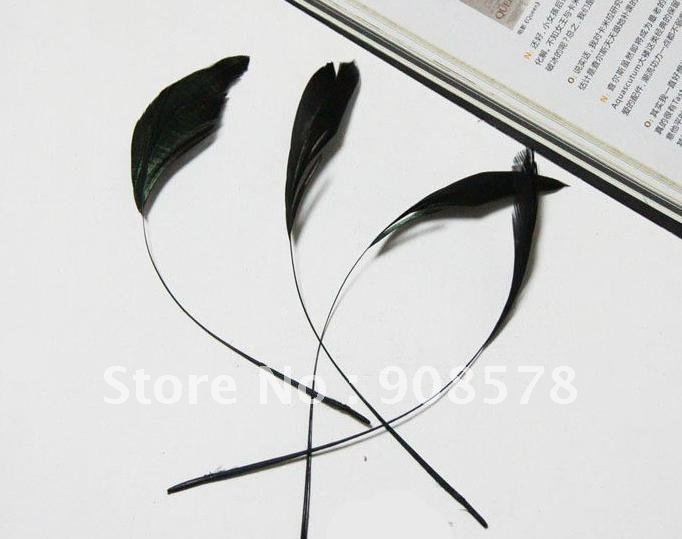 200 pcs/lot 15-23cm Black Party Mask Hat Millinery Accessory Dyed Single Chicken Feather(China (Mainland))