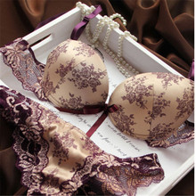 Sexy Women Thin Lace Floral Underwear Push Up Bra Sets & Panty V Plunge Embroidery Lingerie Sets Cup B C