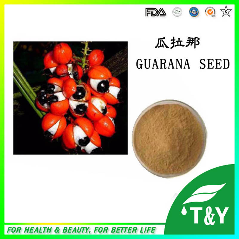 Guarana seeds Extract Powder 500g/lot<br><br>Aliexpress