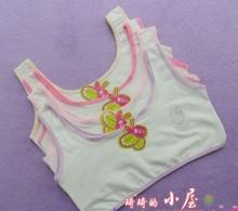 100 cotton young girls training bra 10-15 years old children bras Condole belt vest kids camisole child - Vivi Fashion., LTD store