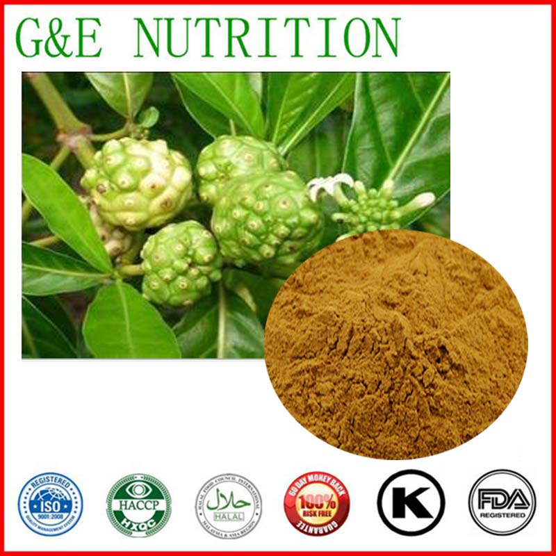 100% nature noni fruit juice concentrate/noni powder/noni extract 300g