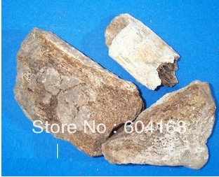Health keel/Sheng longgu/Long Gu - Os Draconis/Drgons Bones , Fossilizid  / tea Traditional Chinese herbal medicine 500 G/<br><br>Aliexpress