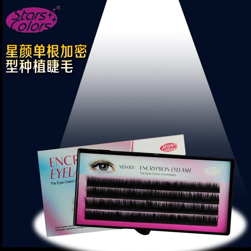 Makeup Eyes False Eyelashes Tools 0.12mm C Curl Black Natural Long Thick Individual Eye Lashes 8mm 10mm 12mm - Professional Nail Beauty store