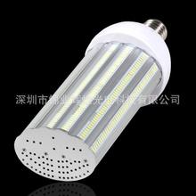 High power 100W E40 E39 E27 E26 LED street Light with 288 leds 130LM/W IP64 Internal driver led corn light 3 years warranty(China (Mainland))