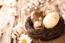 600cm*300cm easter photography backdrops Feather Nest Egg penteadeira Easter Sunday ZJ - katehome2016 store