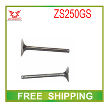 zs250gs zongshen engine valve inlet outlet 250cc dirt bike accessories free shipping(China (Mainland))