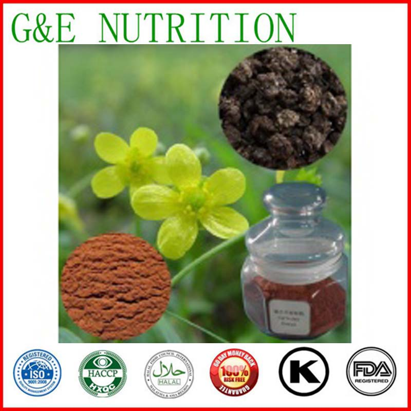 Good Quality Natural Cats Claw Extract,Cats Claw Extract Powder,Cats Claw P.E 500g<br><br>Aliexpress