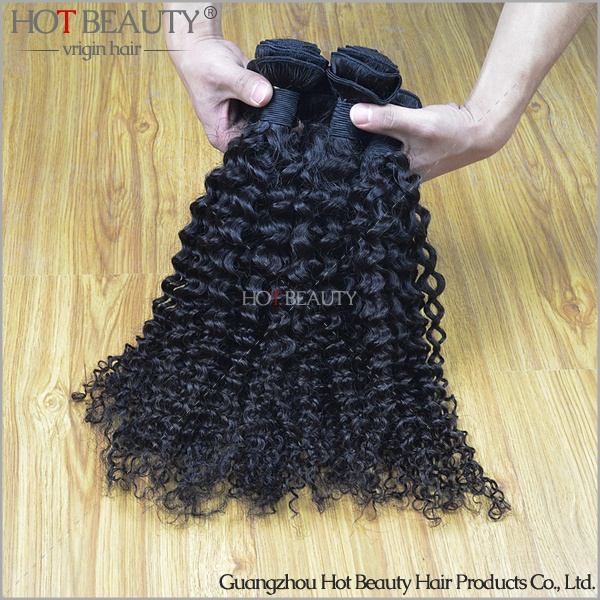 free shipping 3pcs/lot 10--28 Malaysia raw remy curly human hair weft<br>