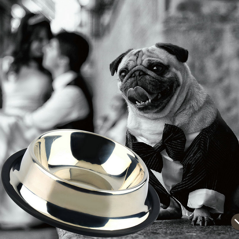 1 x Stainless Steel Standard Pet Dog Puppy Cat Food or Drink Water Bowl Dish(China (Mainland))