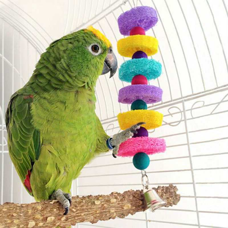 3 4 In Octagon Bird Toys : Colorful bird parrot toys lovely blocks parakeet
