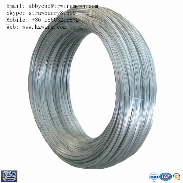 Bright Hot-dipped Galvanized Wire Surface, 0.5-50Kg In A Roll(China (Mainland))