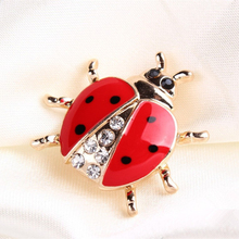 Mode animaux broches strass coccinelle broche pour les femmes bijoux(China (Mainland))