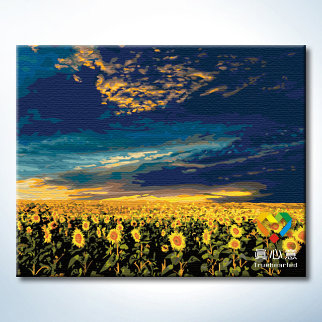 - cherry colored drawing diy digital oil painting hand painting oil painting sunflower - 40 50