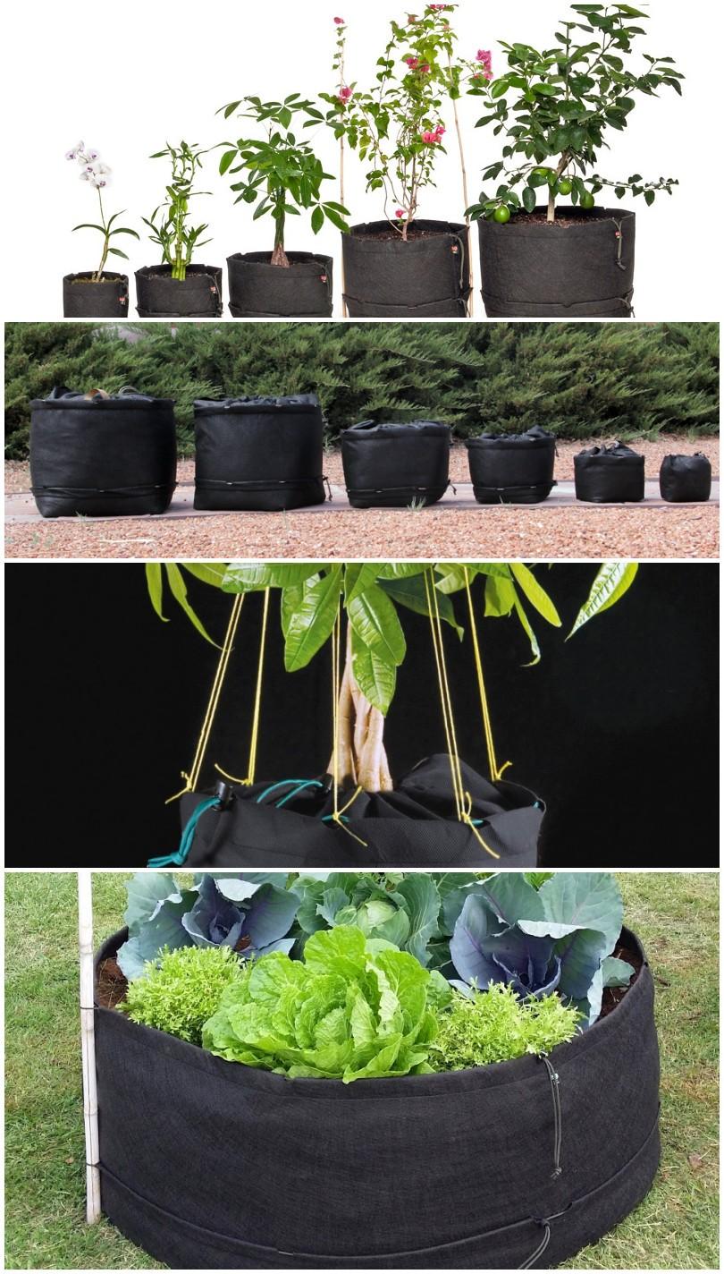 Выращивание помидоров в мешках 19