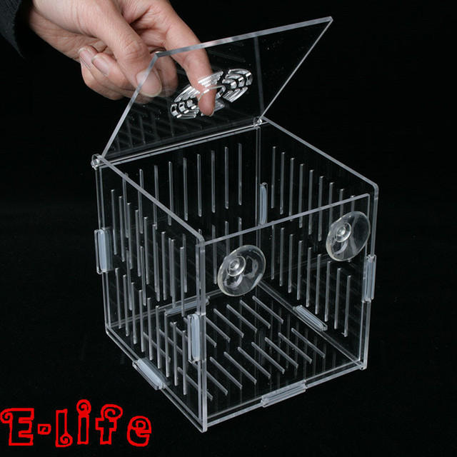 2015 new design acrylic fish tank isolation box aquarium for Fish breeder box