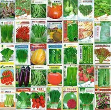 100pcsPromotion!500 seeds wholesale and retail 28 kinds of different vegetable seed family potted balcony garden four seasons pl