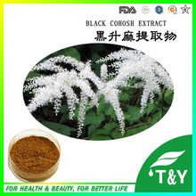 GMP certified manufacture Top quality Triterpenoid Saponins 8% Black Cohosh Extract(China (Mainland))