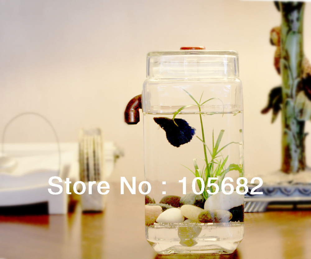 Self cleaning fish tank design joy studio design gallery for Self cleaning betta fish tank