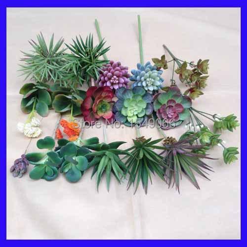 Small fleshy succulents crown simulation bonsai plants wild flower wholesale home decoration ZAKKA\ Succulents Cactus(China (Mainland))