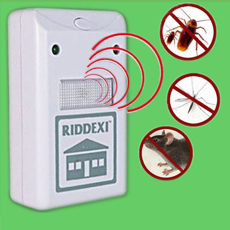how to get rid of tiny spiders indoors