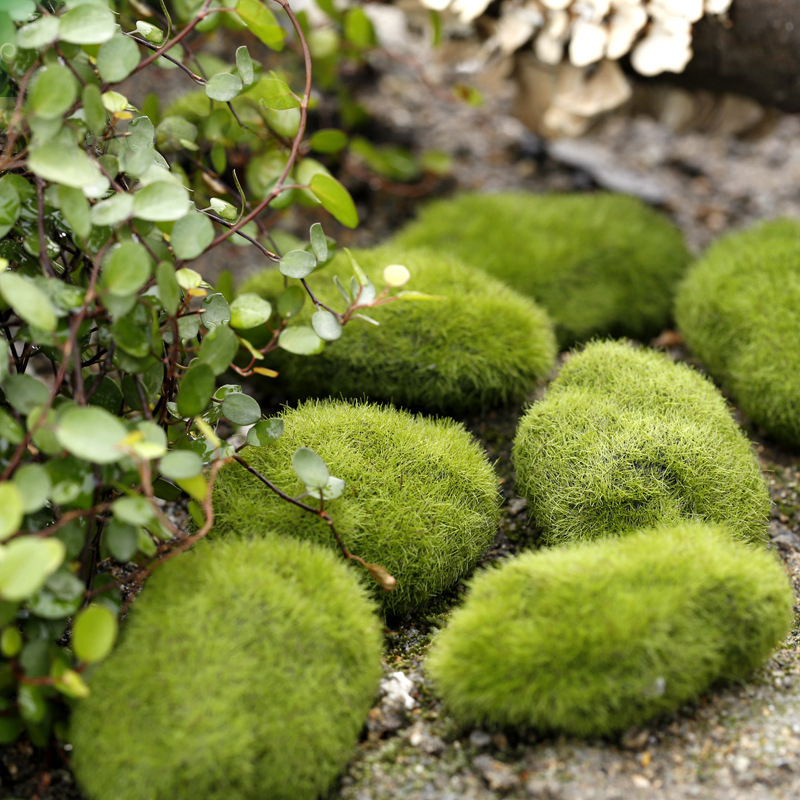 5Pcs Artificial Bryophytes Grass Moss Rocks Fake Faux Emulation Moss Fuzzy Skin Stone Ball Rock For Home Garden Office Decor(China (Mainland))