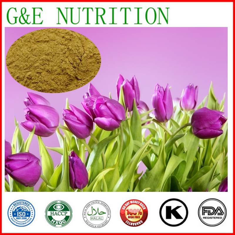 NEW pure natural Tulip Extraction Extract powder 600g 10:1<br><br>Aliexpress