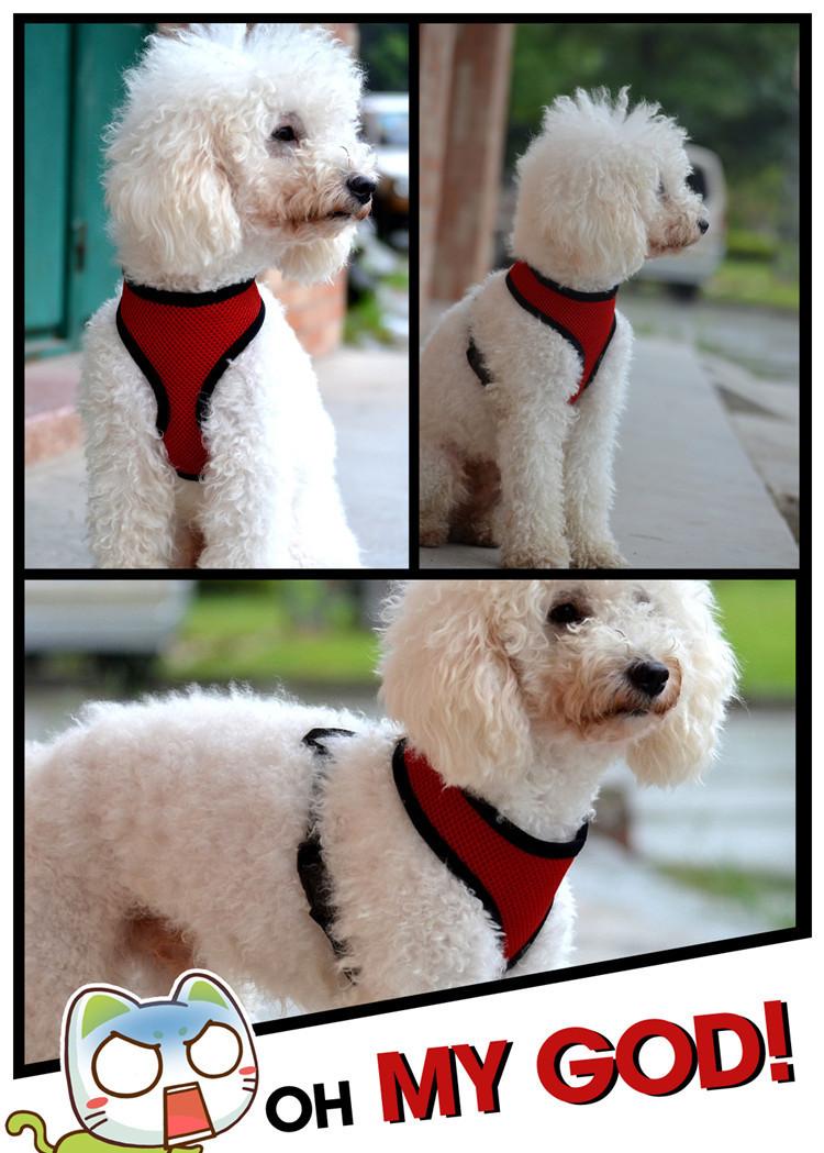 Dog Vest Leash Pet Dog Puppy Cat Vest