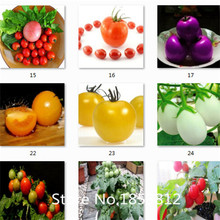 Sale!300 piece 16 Colors NON-GMO  tomato Seeds 2015 New Garden Flowers Four Season Sowing World Rare Heirloom Seeds For Garden