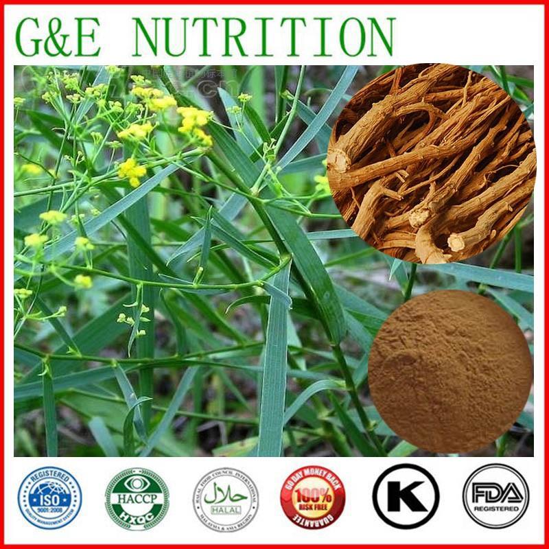100% pure natural 5:1 radix bupleuri extract 800g