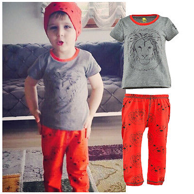 2016 New Casual Boy Girl Baby Clothes Lion Tops T-shirt + Pants 2pcs Outfits Clothing Set Spring Summer 2 3T 4T 5T 6T 7T(China (Mainland))