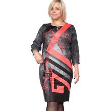 BFDADI Новый 2016 год сбора винограда платья мода женские одежды весна печать осень свободного покроя платья 5XL Большой размер платья 7 - 2257(China (Mainland))