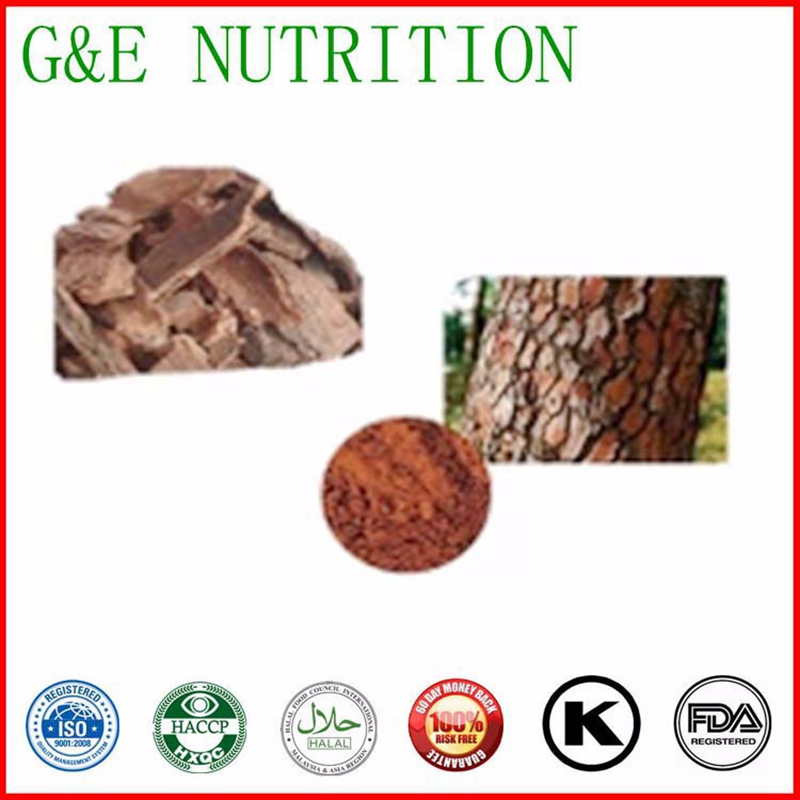 Top Quality From  experience Manufacture  Pine Bark Extract 4:1 1000g<br><br>Aliexpress