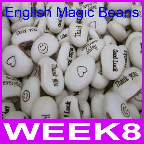 1000pcs/lot Wholesale Magic Growing Message Beans Seeds White English Magic Bean Bonsai Green By EMS(China (Mainland))