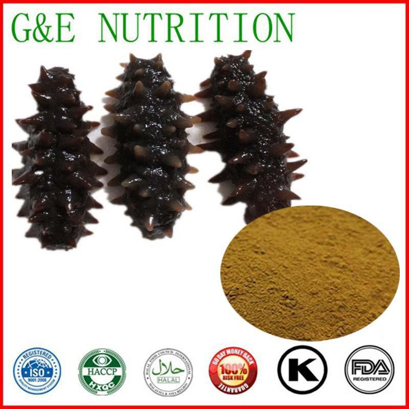 1000g Sea cucumber/ Die Seegurke/ Holothurians Extract with free shipping  <br><br>Aliexpress