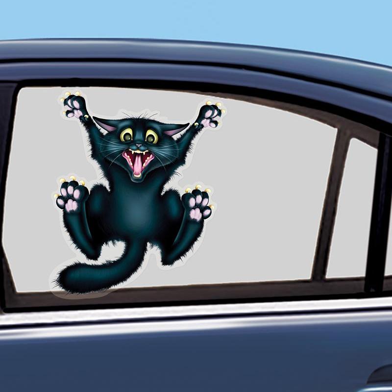 Cat Scratching Door Funny