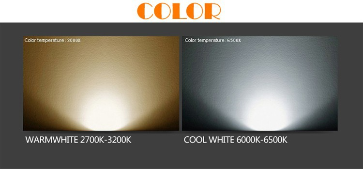 LED Wall light-7
