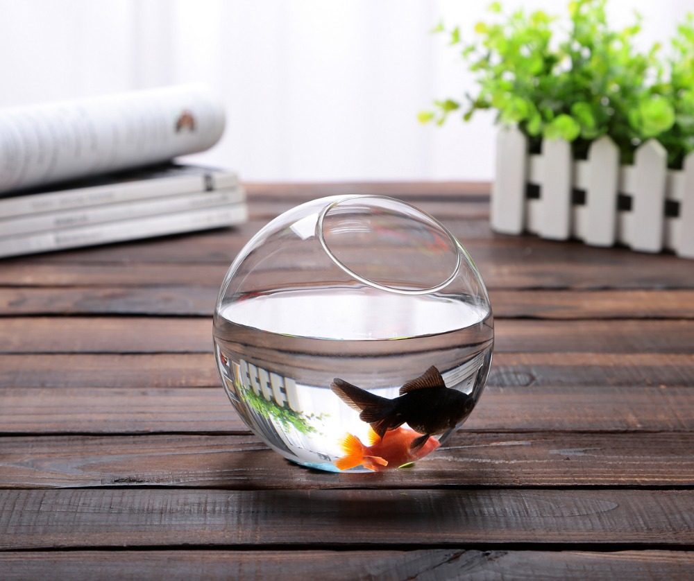 buy dia15cm round fish tank ball vase handmade succulent terrarium glass. Black Bedroom Furniture Sets. Home Design Ideas