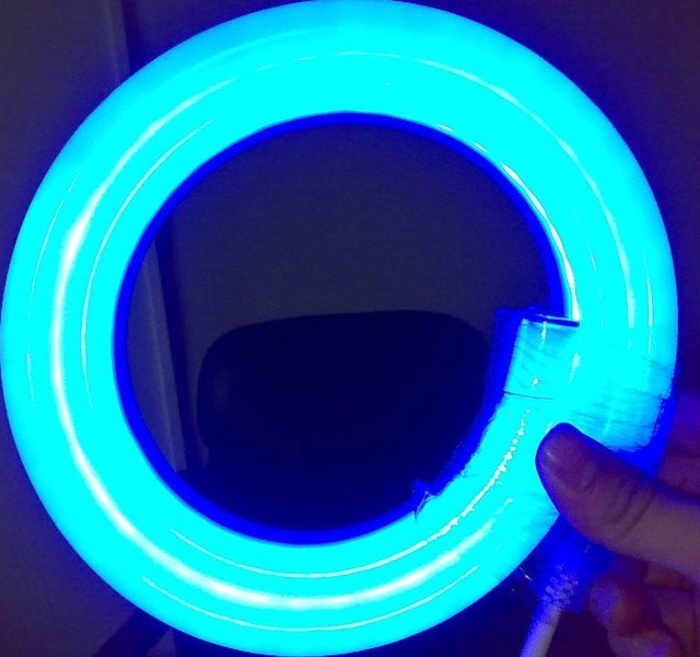LED Neon Flex Light/2-wired LED Neon Flexible;Size:10*14mm;80LEDs/m;BLUE color with 50m Length per Roll
