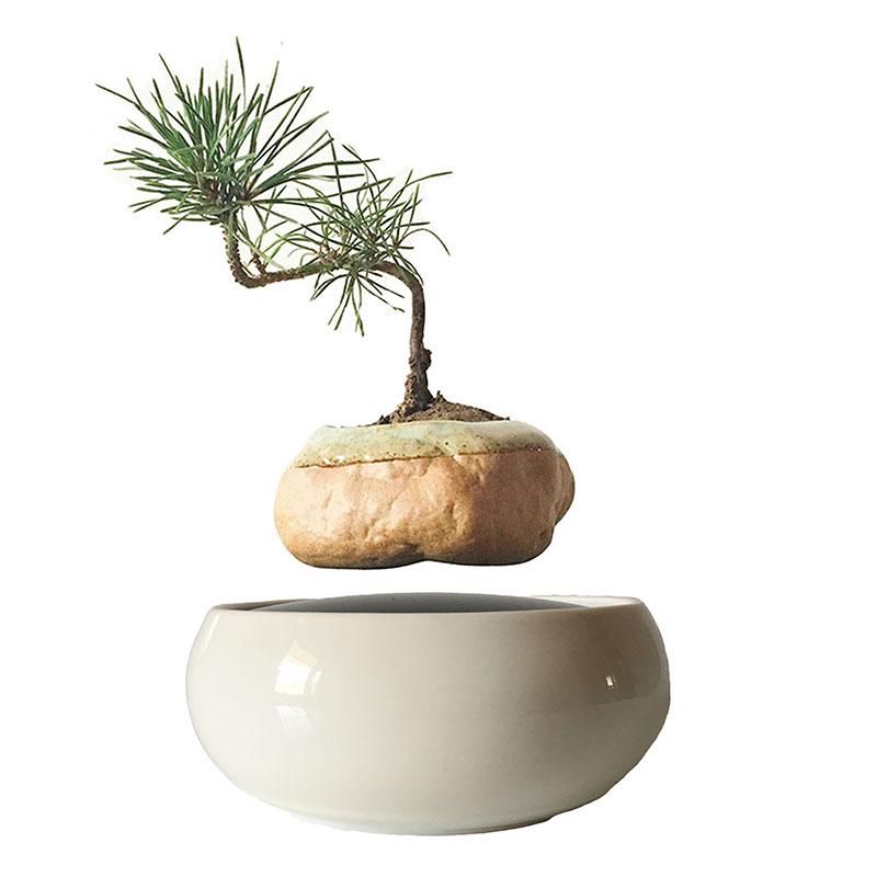 Japanese flower vases reviews online shopping japanese for Floating plant pots