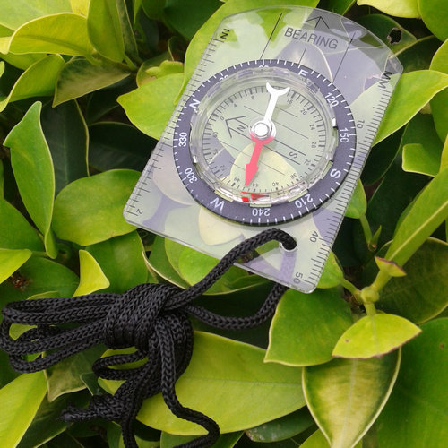 Creative Compass with Ruler and Strap for Teaching -Transparent with Teaching compass Black(China (Mainland))